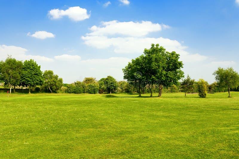 гольф поля стоковые изображения