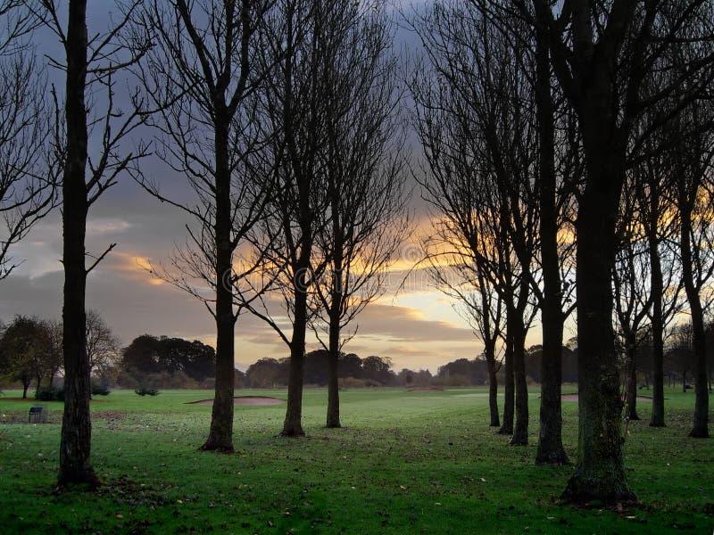 гольф рассвета курса стоковая фотография rf