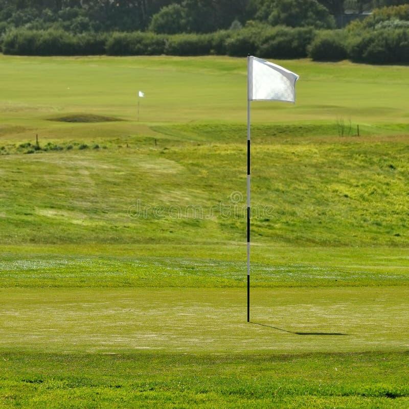 гольф флага поля