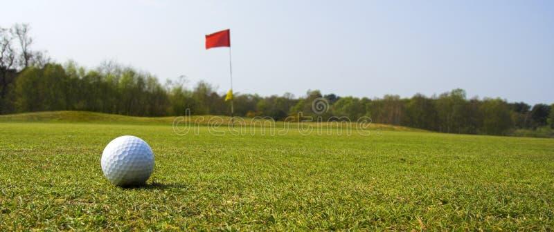 гольф шарика стоковые изображения rf
