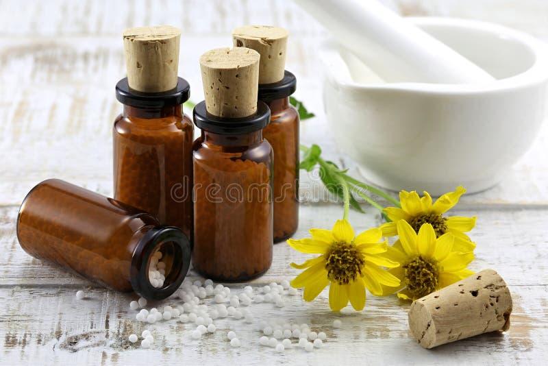 Гомеопатические пилюльки арники стоковые фотографии rf