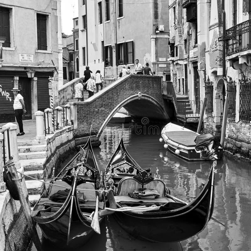 Гондолы в Венеции стоковые фото