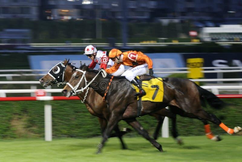 Download гонка лошади отделки редакционное изображение. изображение насчитывающей разыгрыш - 13926450