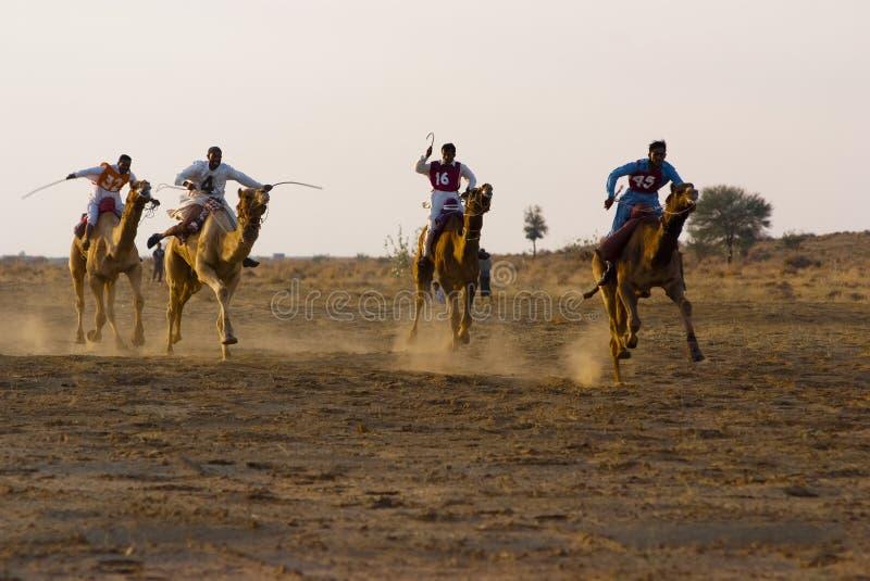 Гонки верблюда в Jaisalmer стоковое изображение rf