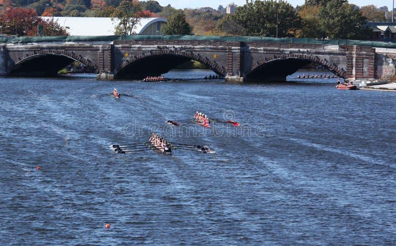 Гонки TBC (7) и rowing общины (8) стоковые изображения rf