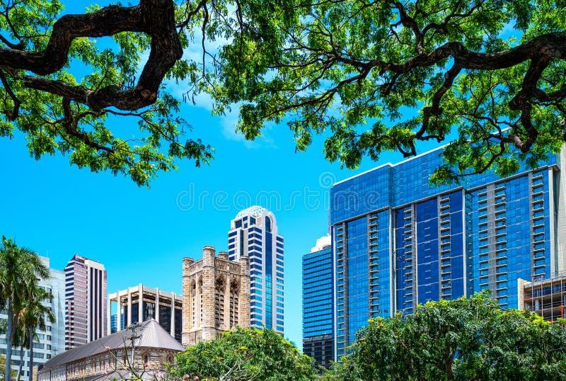 Гонолулу, Гаваи, городские здания увиденные от сада капитолия государства стоковые изображения rf
