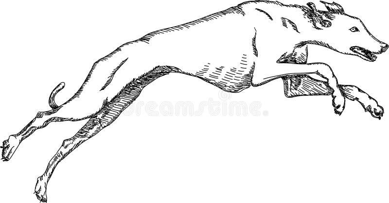 Гончая иллюстрация вектора