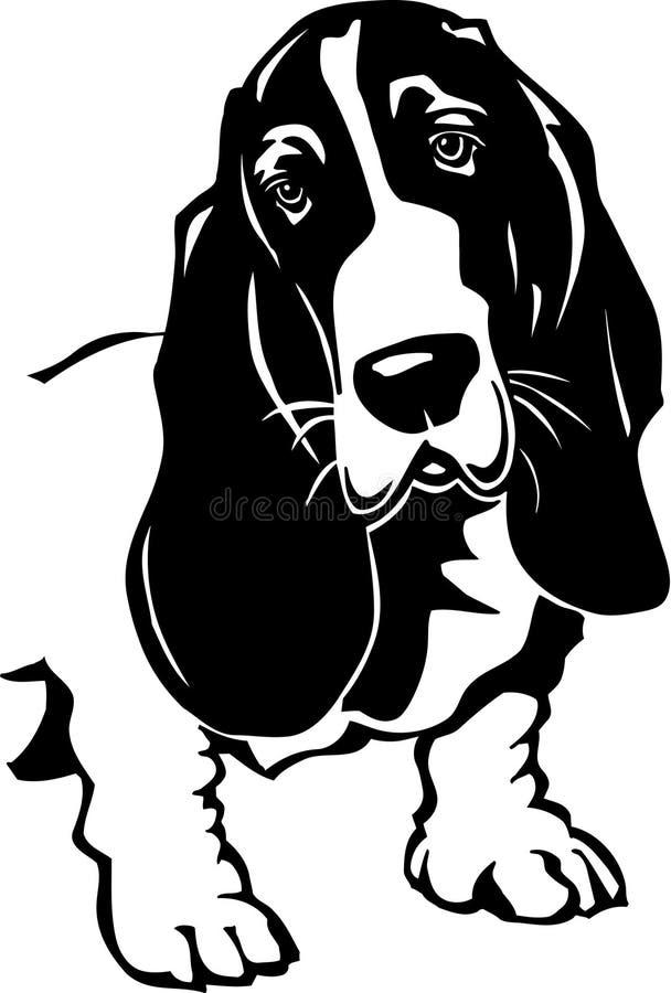 гончая basset бесплатная иллюстрация