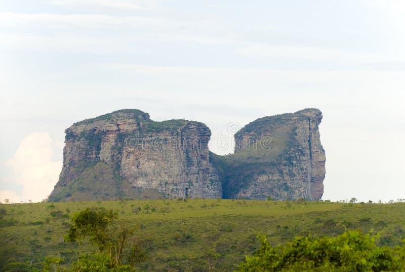гора верблюда стоковая фотография