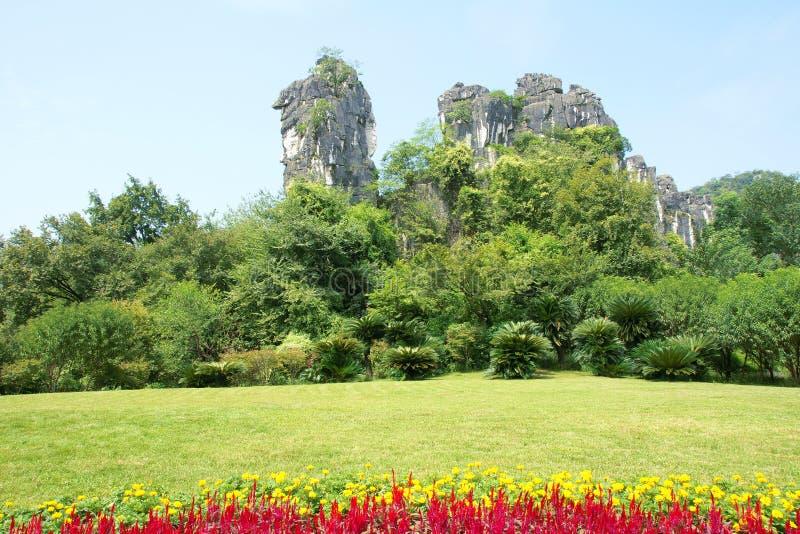 Гора верблюда стоковая фотография rf