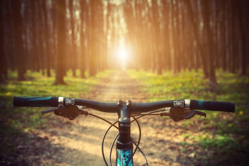 Гора велосипед вниз стоковое изображение