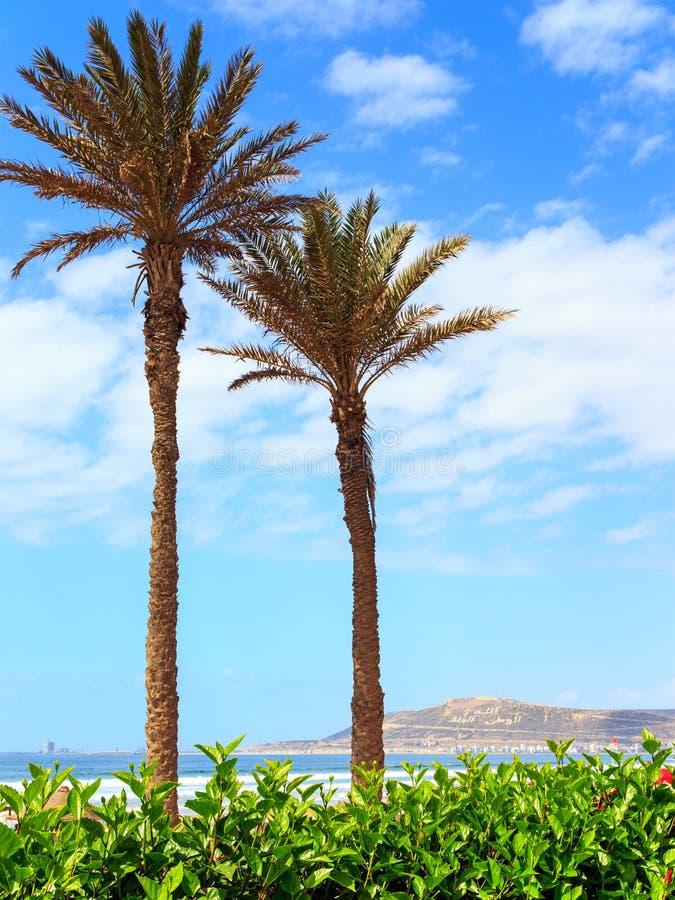 Гора в Агадире, Марокко стоковые изображения
