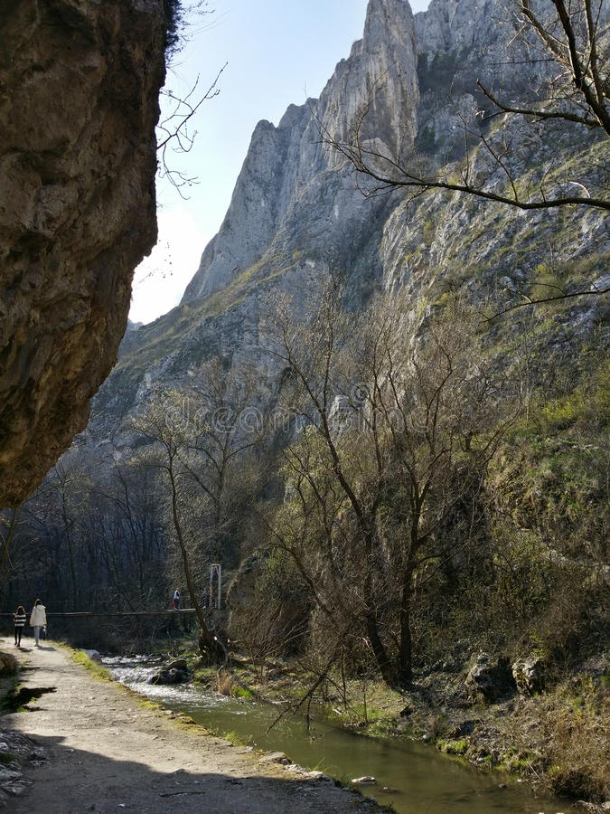 Гора в Румынии стоковое фото