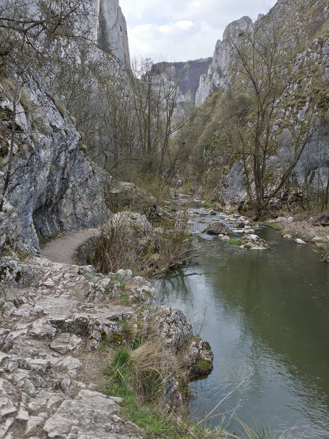 Гора в Румынии стоковые фото