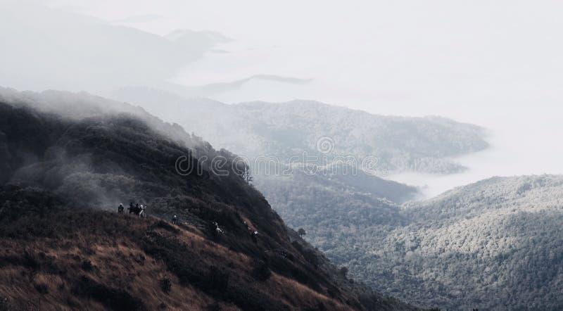 Гора в chiangmai стоковые изображения rf