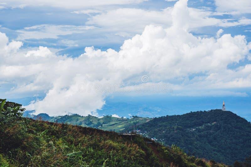 Гора имеет естественное зеленое дерево в сезоне дождей и туманное голубое небо в Таиланде на Phu Tupberk стоковые фотографии rf