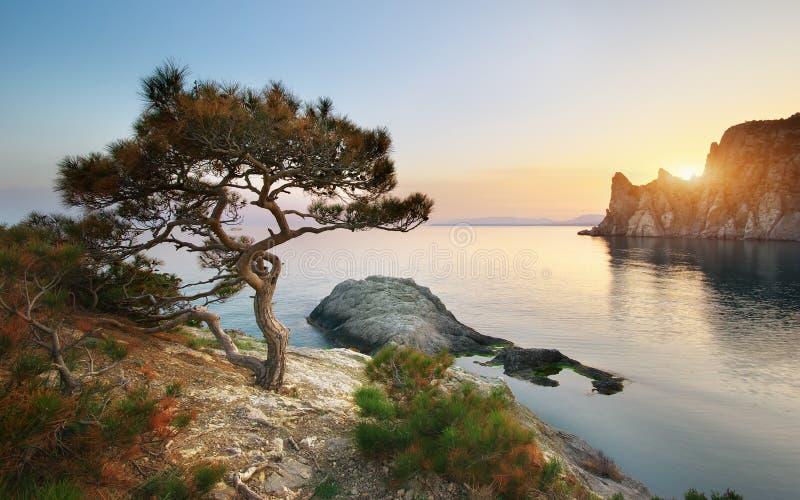 Гора и море. стоковое фото rf