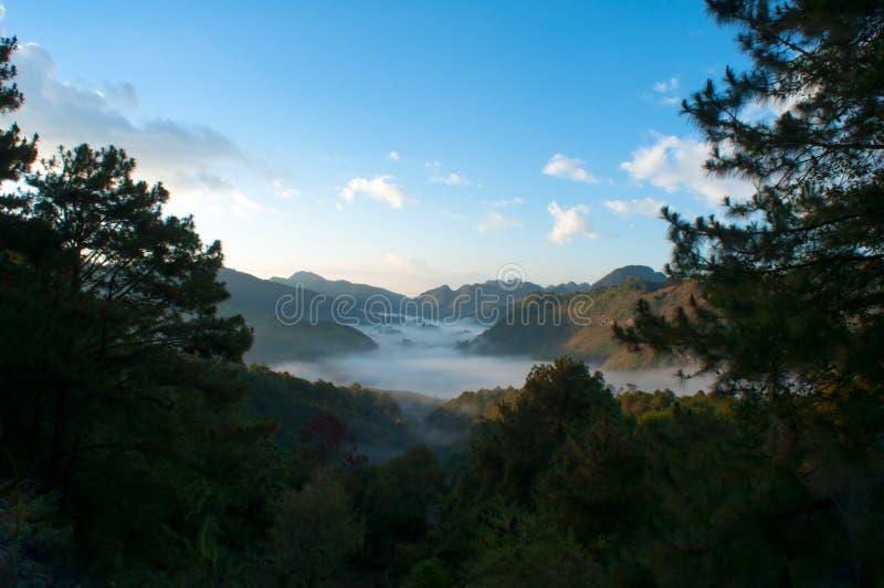 Гора и туман в утре стоковое фото