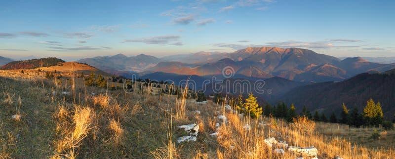 гора ландшафта пущи осени цветастая стоковые фотографии rf