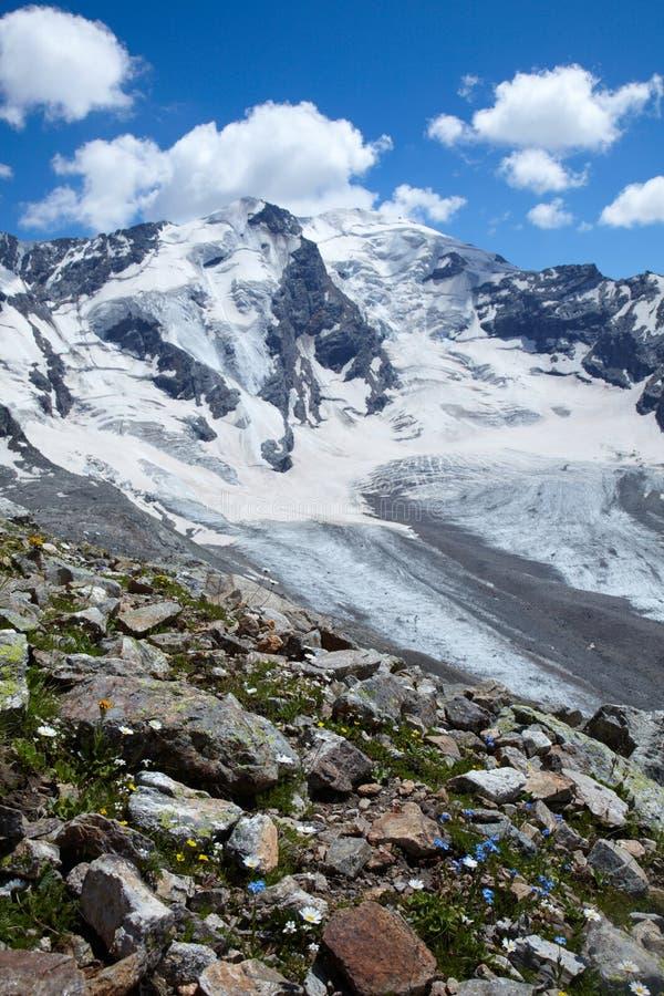 Download гора ландшафта цветков стоковое изображение. изображение насчитывающей бело - 18376295