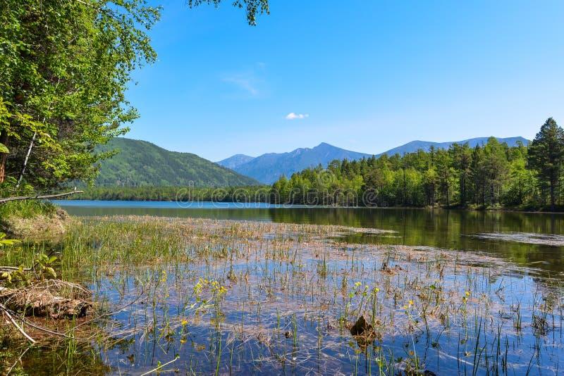Гора на озере Frolikha стоковые изображения