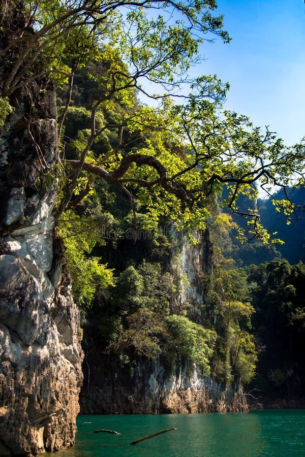 Гора на Khao-sok Suratthani, Таиланде стоковое фото