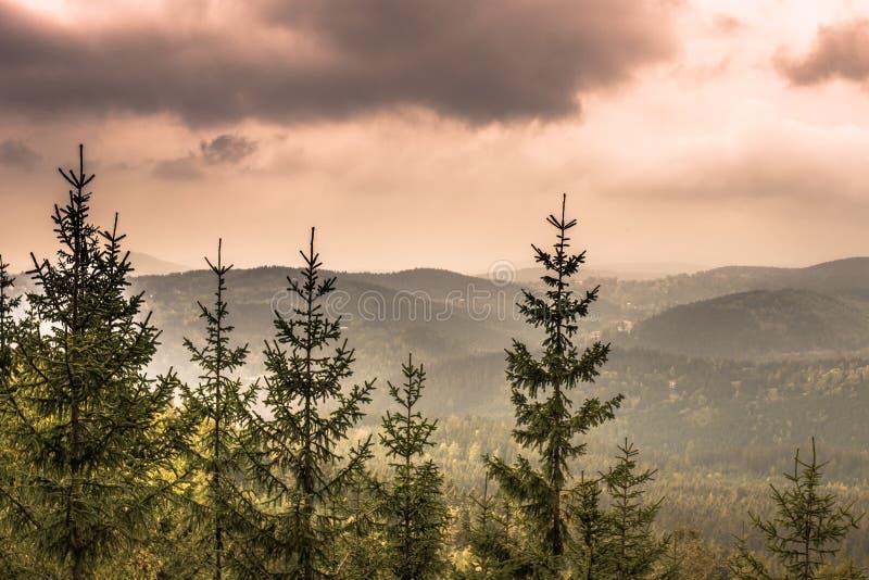 Гора около Harrachov, чехия Krkonose стоковое фото