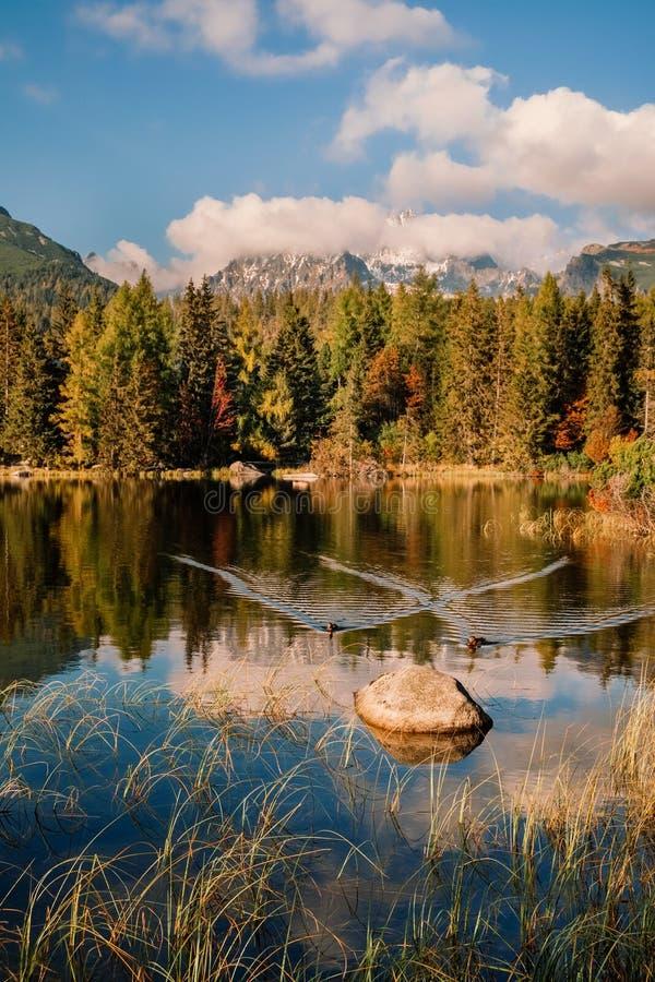 Гора осени и озеро Strbske Pleso в высоком Tatras, Словакии стоковое изображение