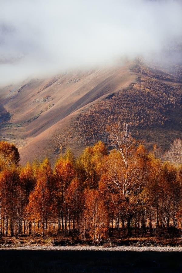 Гора осени утра стоковое изображение