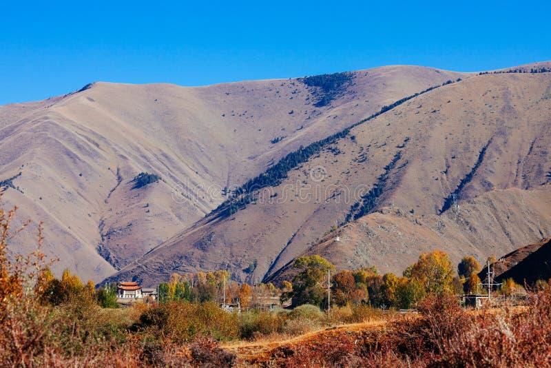 Гора осени утра стоковая фотография rf