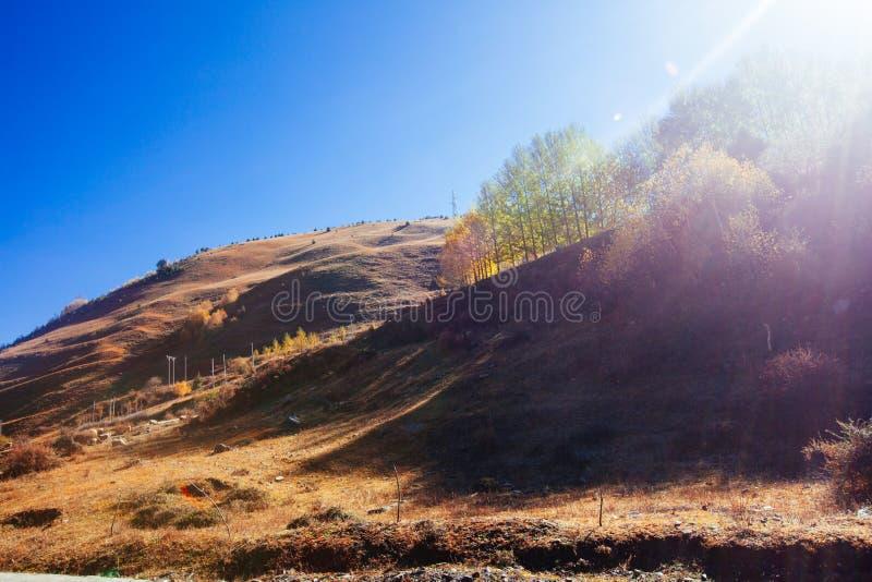 Гора осени утра стоковые изображения