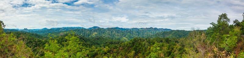 Гора панорамы и деревья дождевого леса стоковые фото