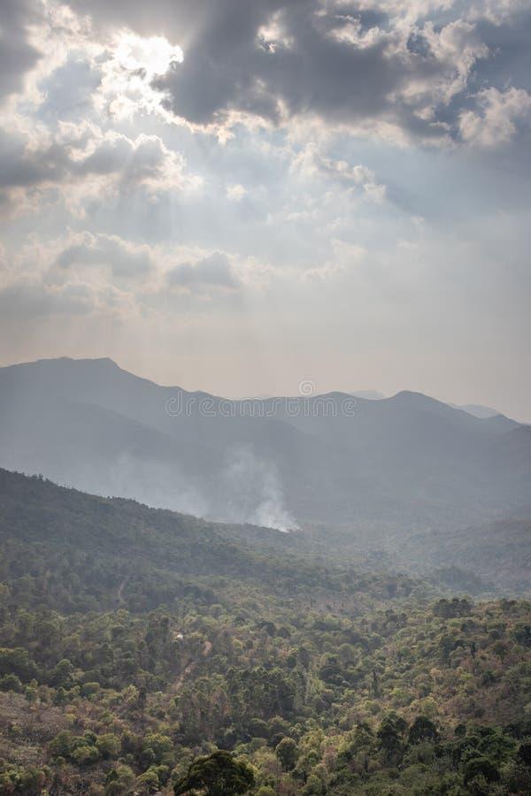 Гора покрытая с зеленым лесом стоковые изображения