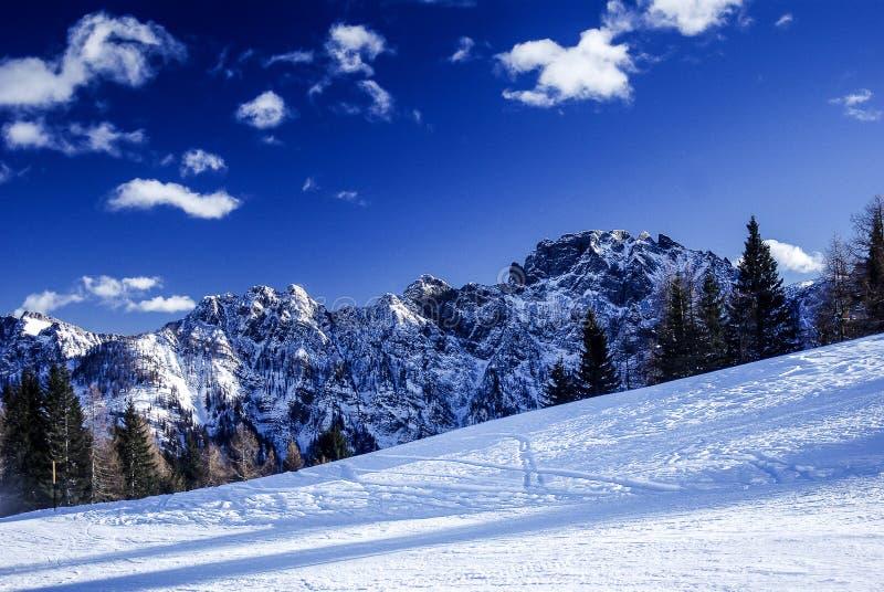 Гора покрытая с снежком стоковые фото