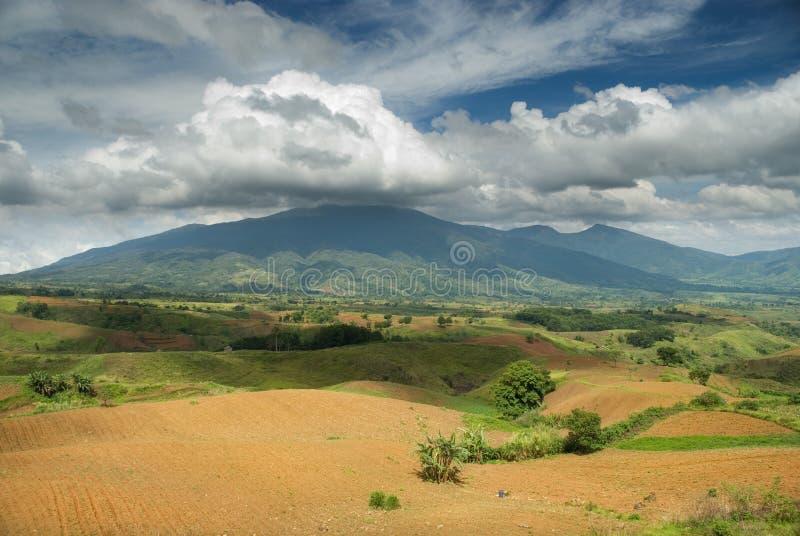 гора поля вспахала тропическое стоковая фотография rf