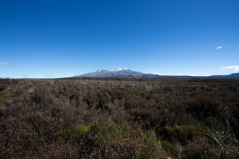 Гора пустыни парка Tongariro стоковые фотографии rf