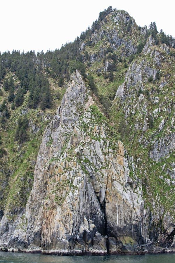 гора свободного полета заросший лесом стоковые изображения rf