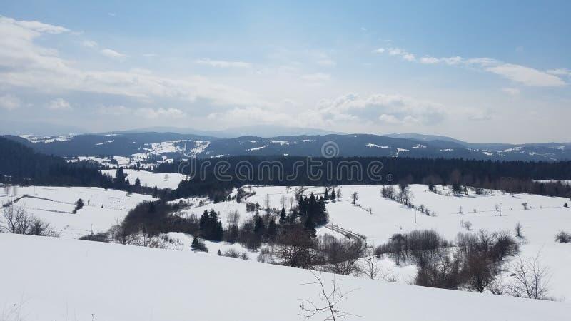 Гора снега с темносиним небом Прикарпатский, Украина, Европа стоковые фотографии rf