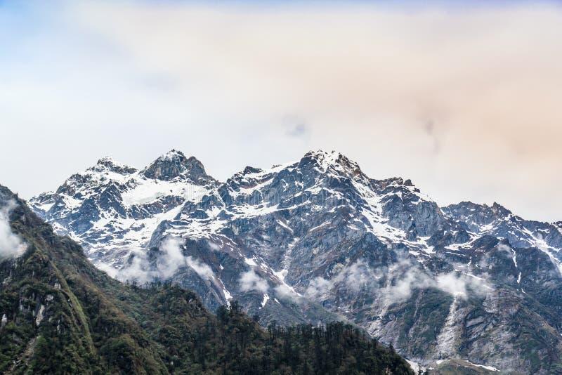Гора снега с туманом стоковые фото