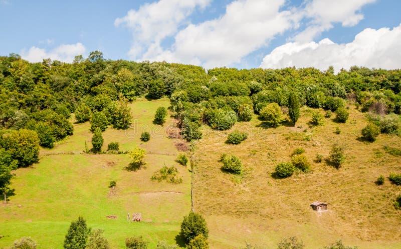 Гора с лесом и малым укрытием стоковое изображение