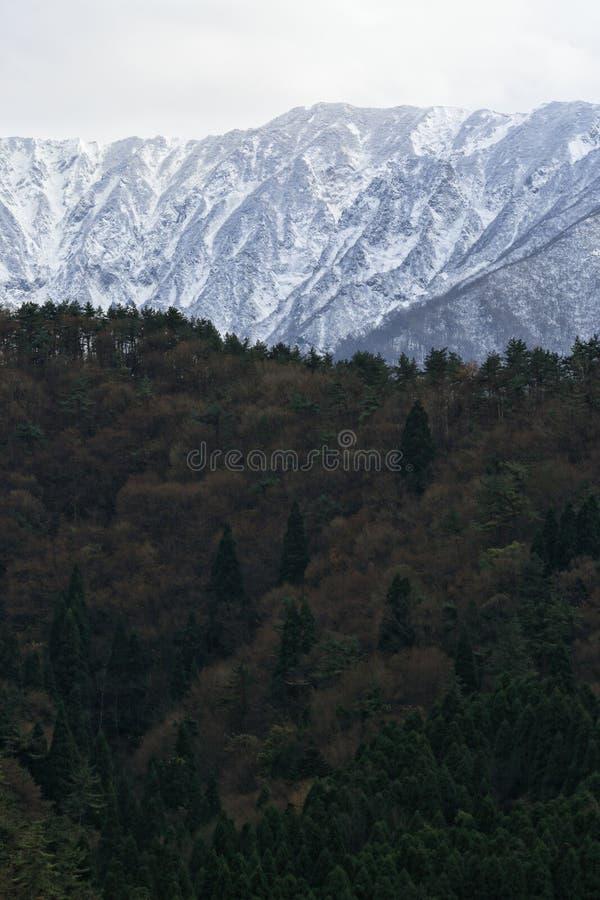 Гора с снегом стоковое изображение
