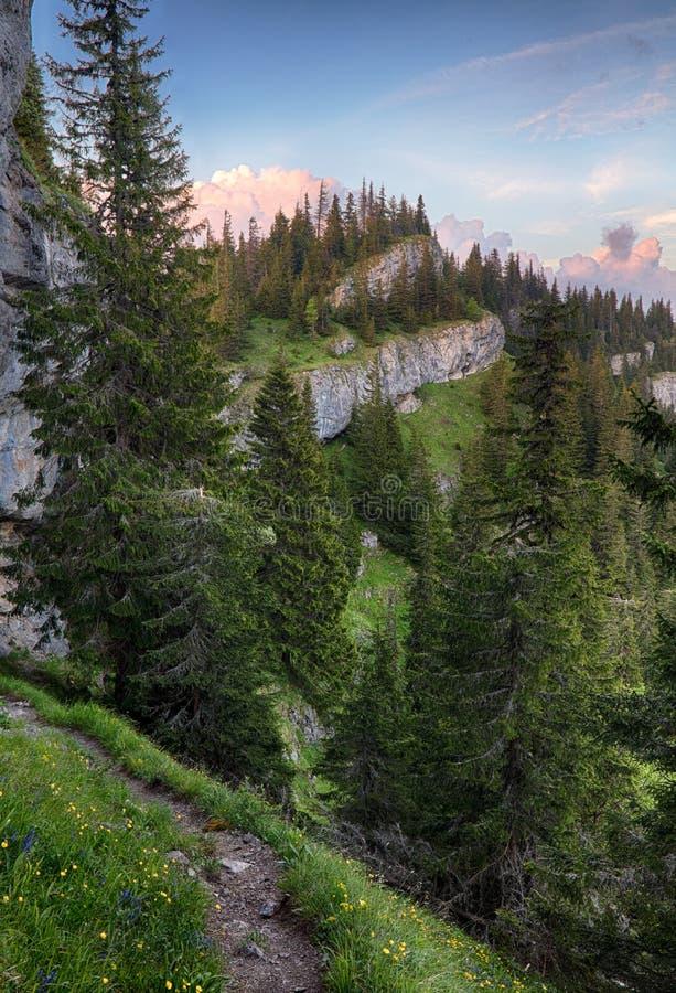 Гора с утесами и лесом - Ohniste, низким Tatras стоковые изображения