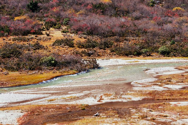 Гора тибетца осени стоковое фото rf