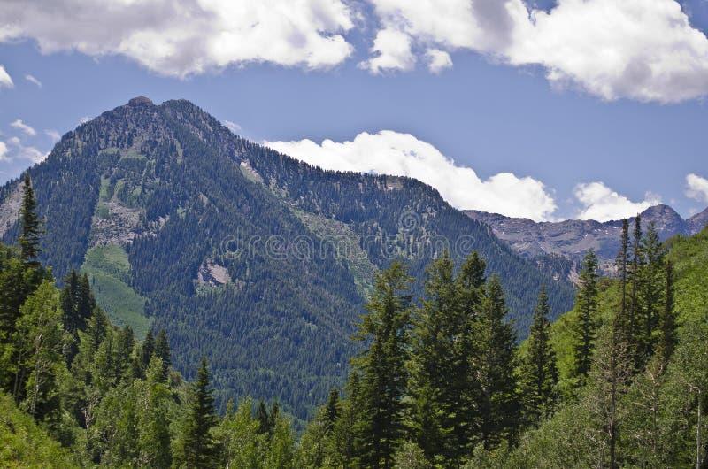 Гора Уосата стоковые фото