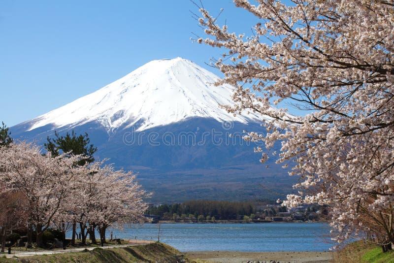 Гора Фудзи стоковое изображение