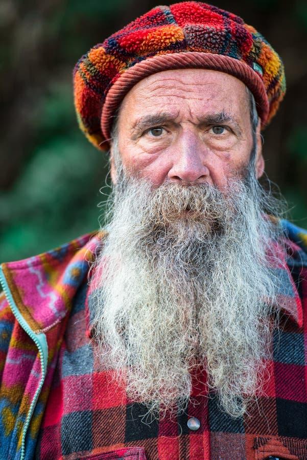 Гора характера с длинной бородой стоковые изображения rf