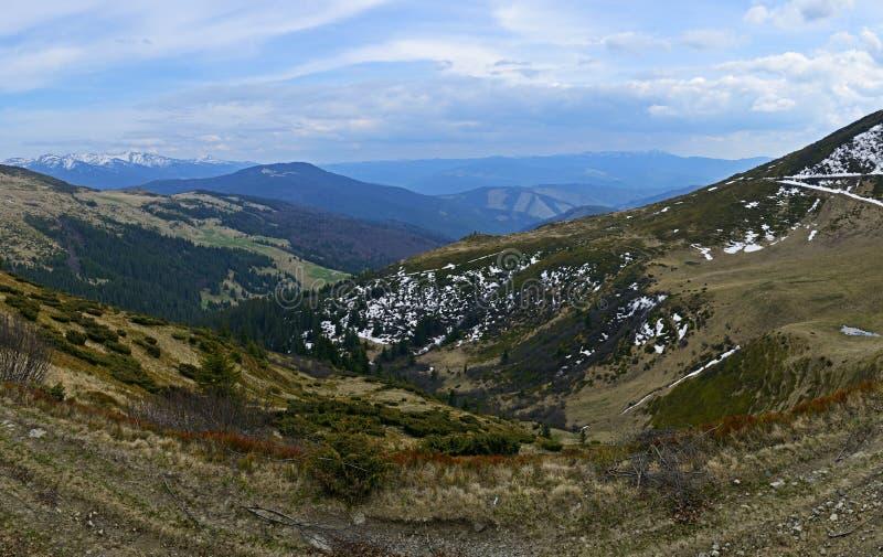 Download Гора стоковое фото. изображение насчитывающей вегетация - 40583274