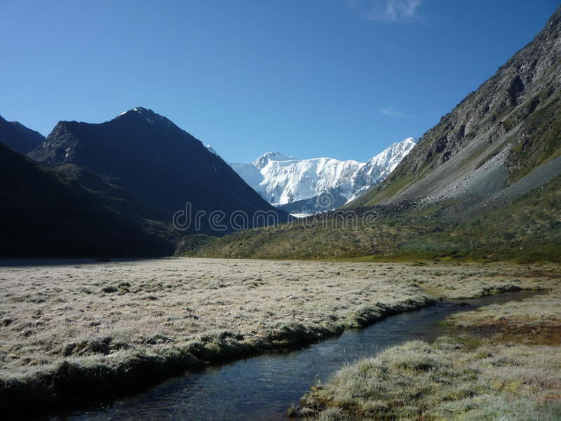 Гора Belukha, Altai стоковое изображение rf