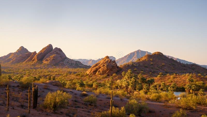 Гора Camelback увиденная от парка Феникса Аризоны Papago стоковая фотография