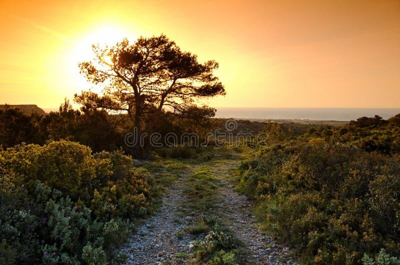 Гора clape La в юге Франции стоковая фотография rf